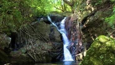 Katalagolla Oya