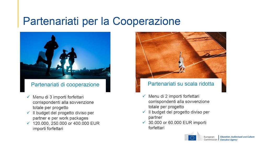 Slide presentazione Pintus/Di Fonzo- webinar PE/ACES Italia