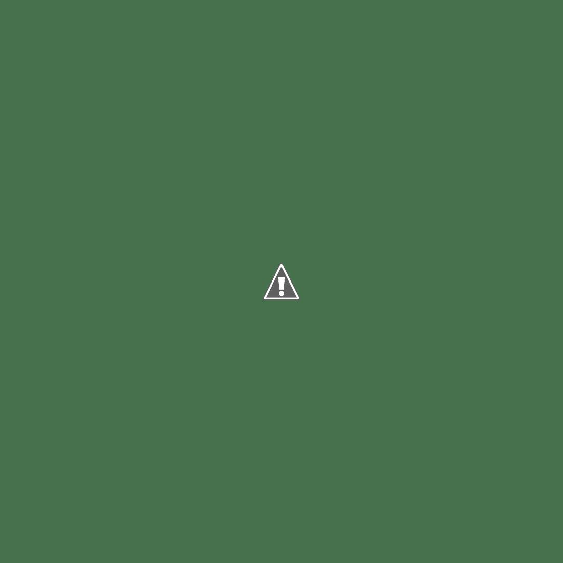 기차 밖 풍경