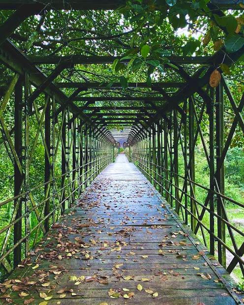 Halaba Steel Bridge