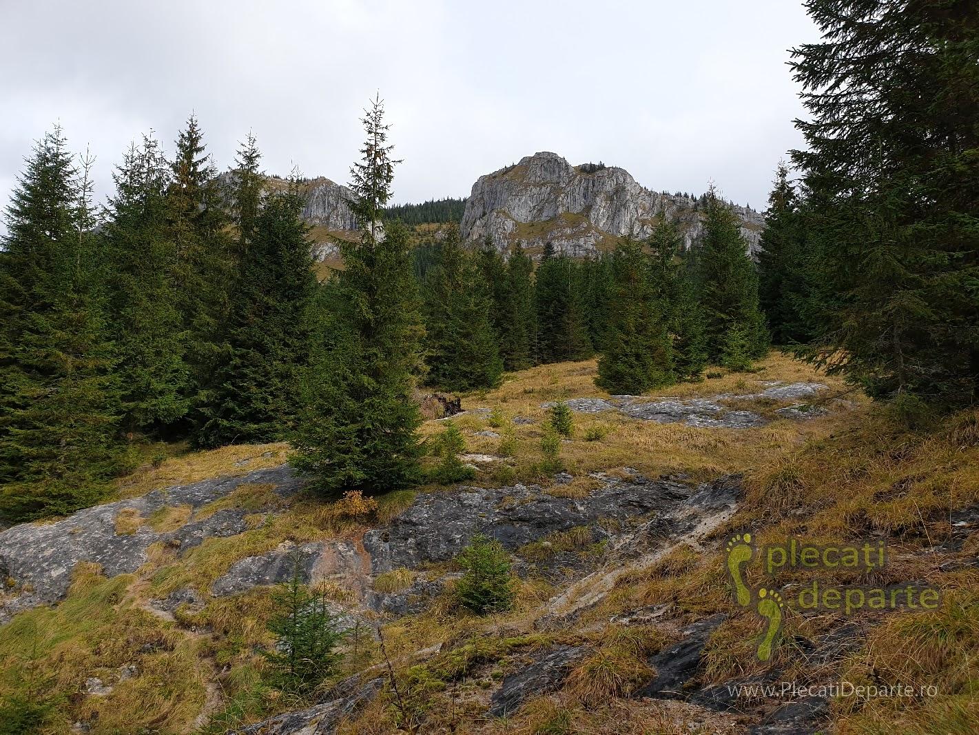 Creasta Pietrele Albe vazute pe traseul de la cascada Valul Miresei, Rachitele
