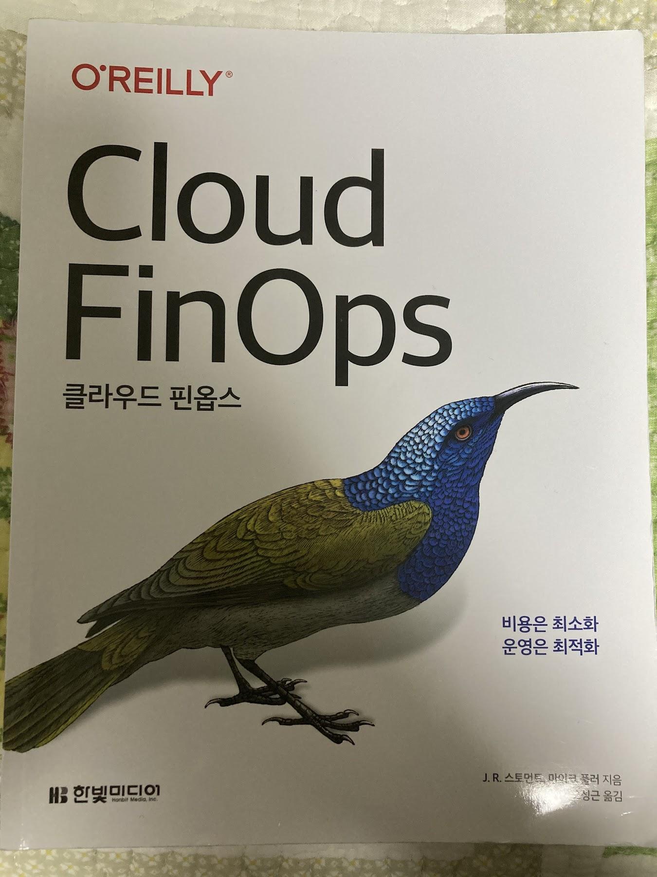 cloud_finops-01