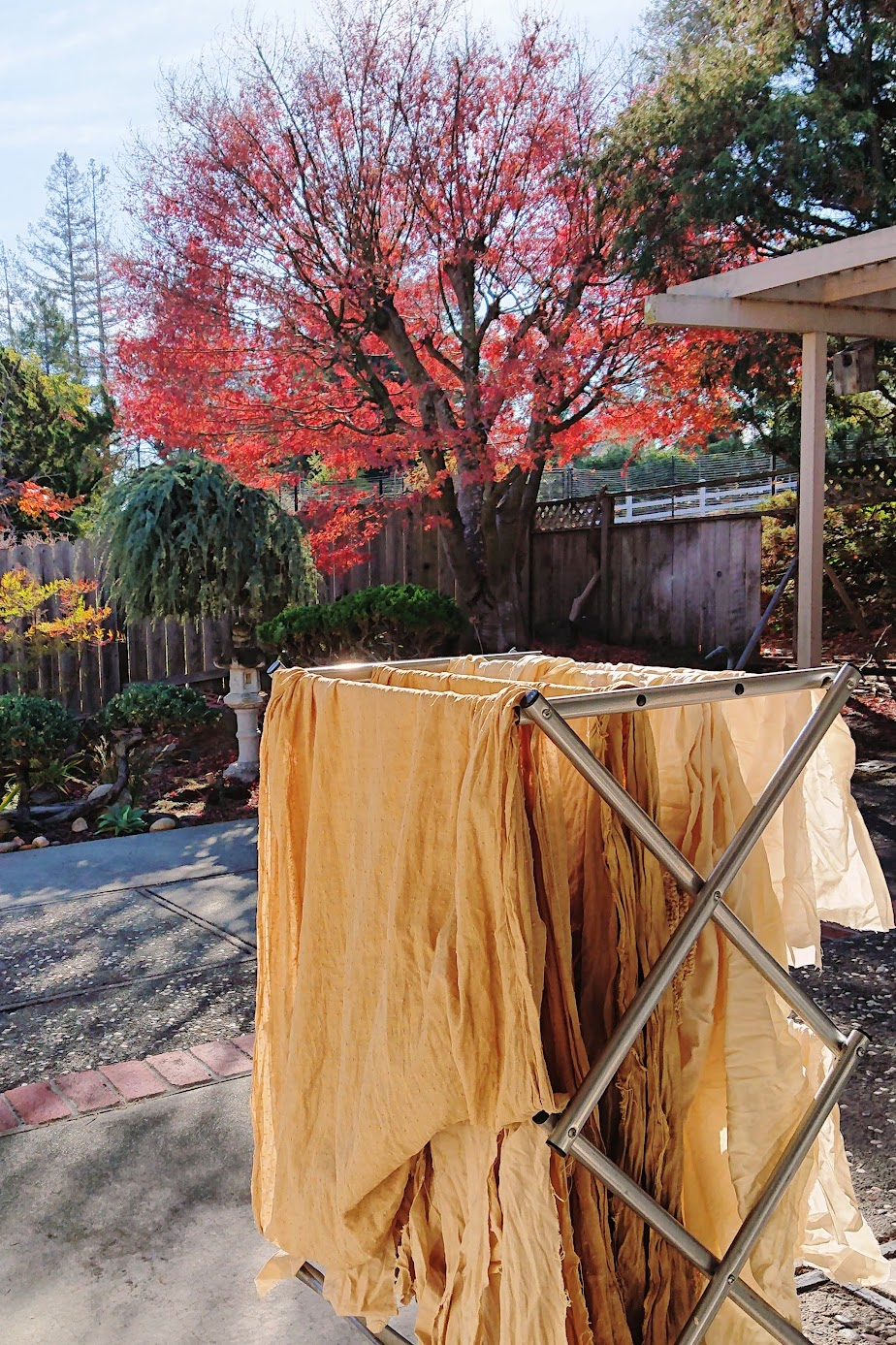 Air drying Batch #2 fabrics with the sourced Japanese Maple tree on the background | FAFAFOOM STUDIO