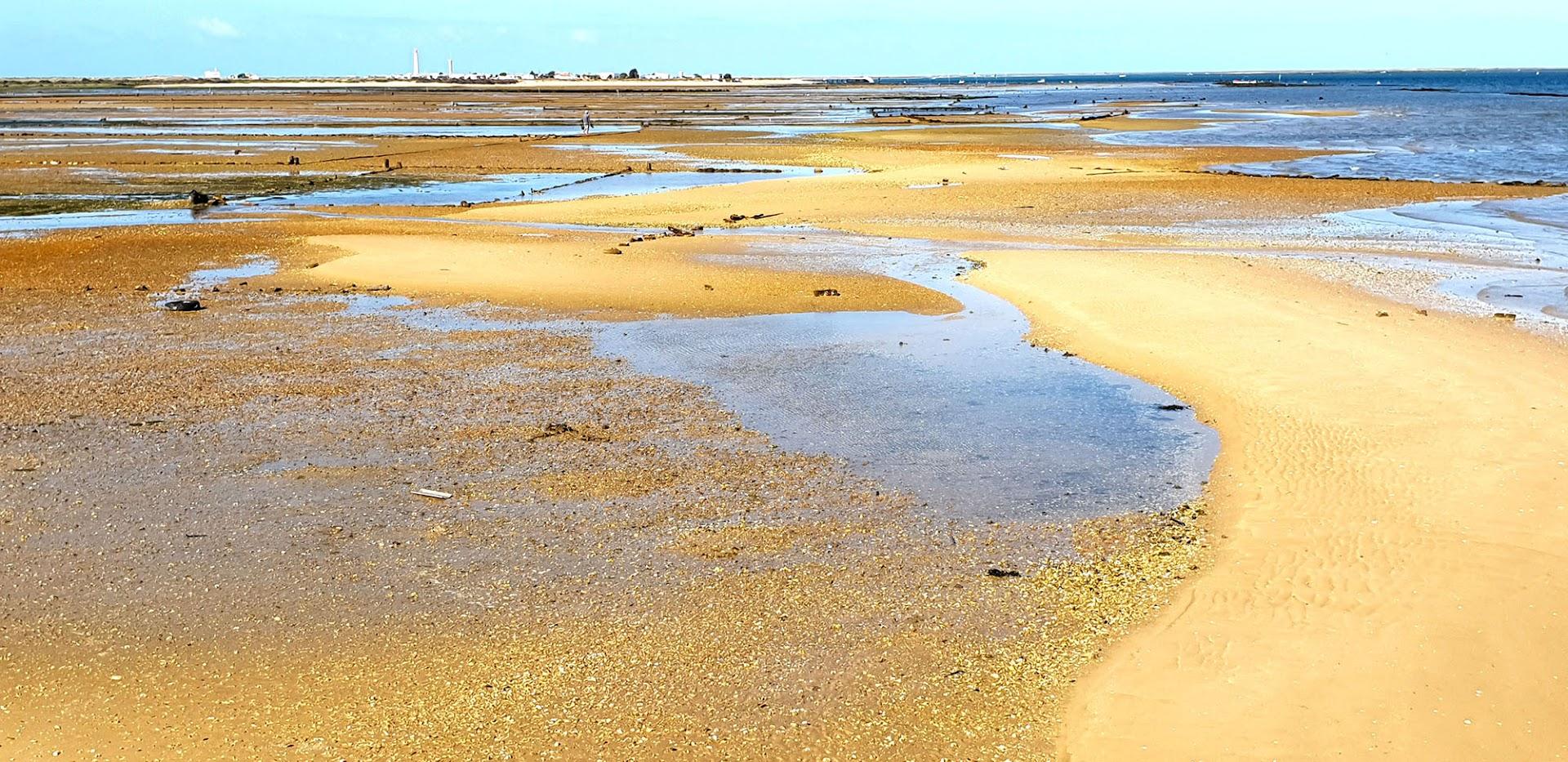 Visitar a RIA FORMOSA, um Algarve paradisíaco cheio de glamour e encanto
