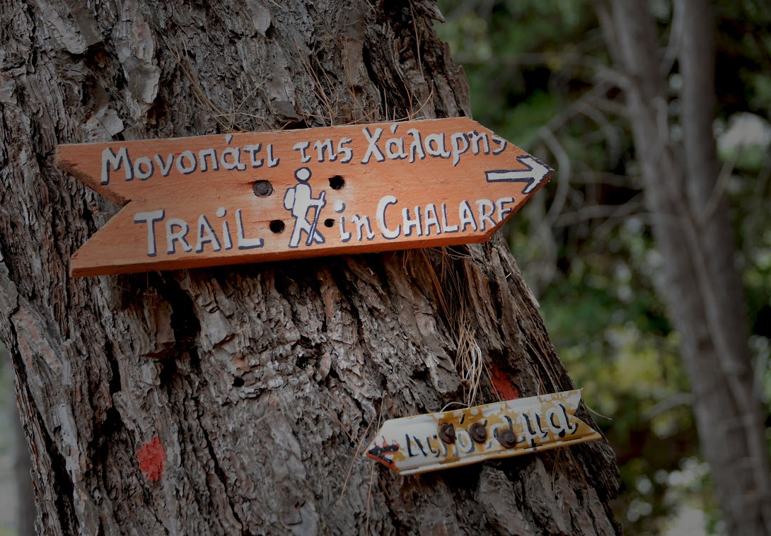Old hiking trail signs in the canyon