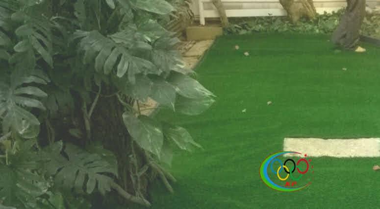 Chưa phải là Đưa Thảm cỏ nhựa nhân tạo này  mới xuất hiện