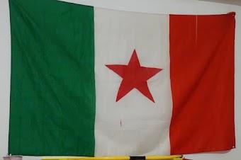 Fahne: Grün, weiß, rot mit rotem Stern.