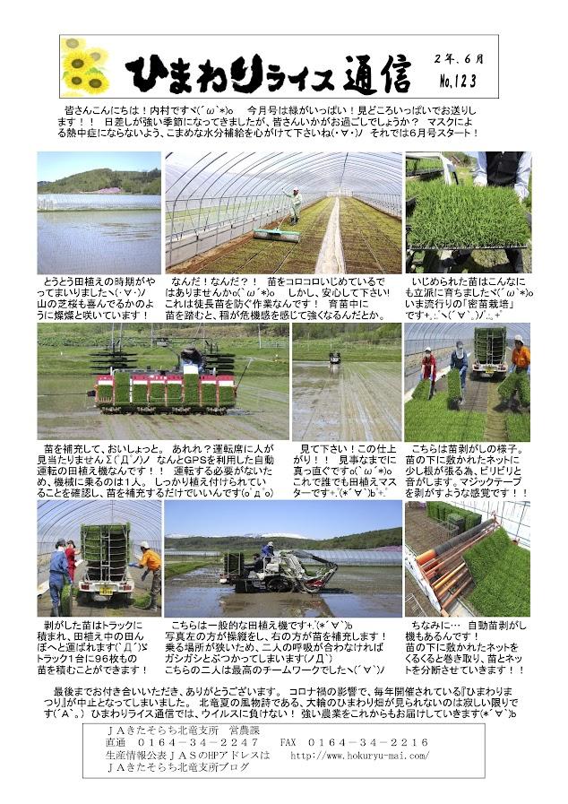 ひまわりライス通信 No.123・令和2年6月