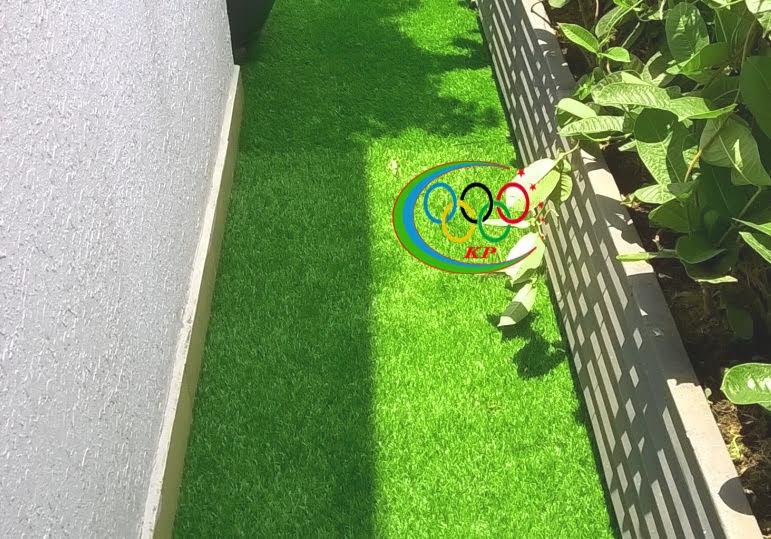 Phú An Phát chuyên trang hoàng nội ngoại thất bằng Cỏ nhân tạo sân vườn