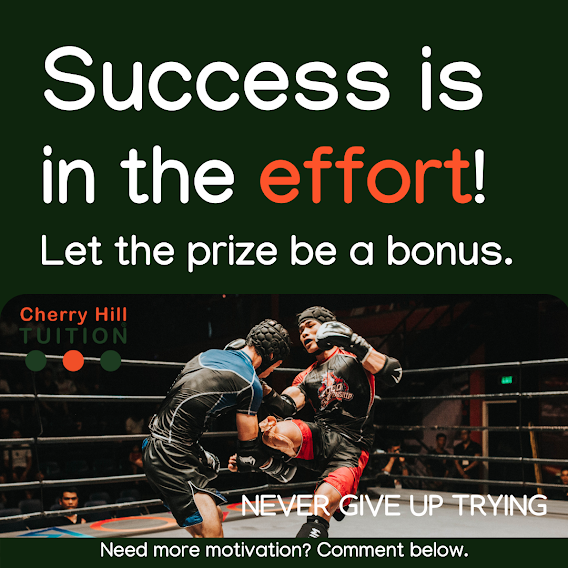 Success is in the effort! let the prize be a bonus. We will aim to keep you motivated.