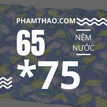 Nem nuoc Ngoc THao 75x65cm