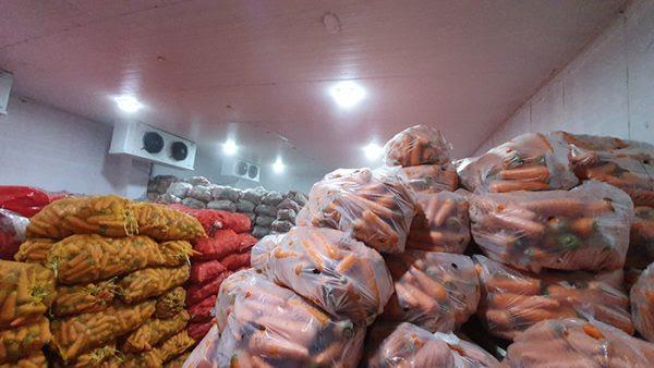 Việc lắp đặt kho lạnh bảo quản nông sản mang lại nhiều lợi ích