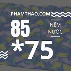 Nem nuoc Ngoc Thao 75x85cm