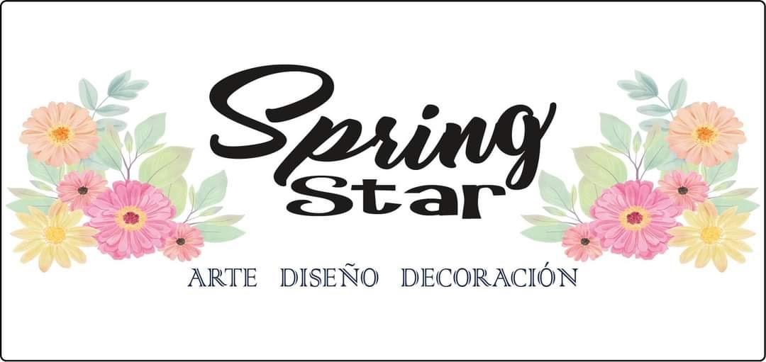SPRING STAR PUB