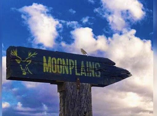 Moon Plains