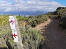 Botellari hills trails