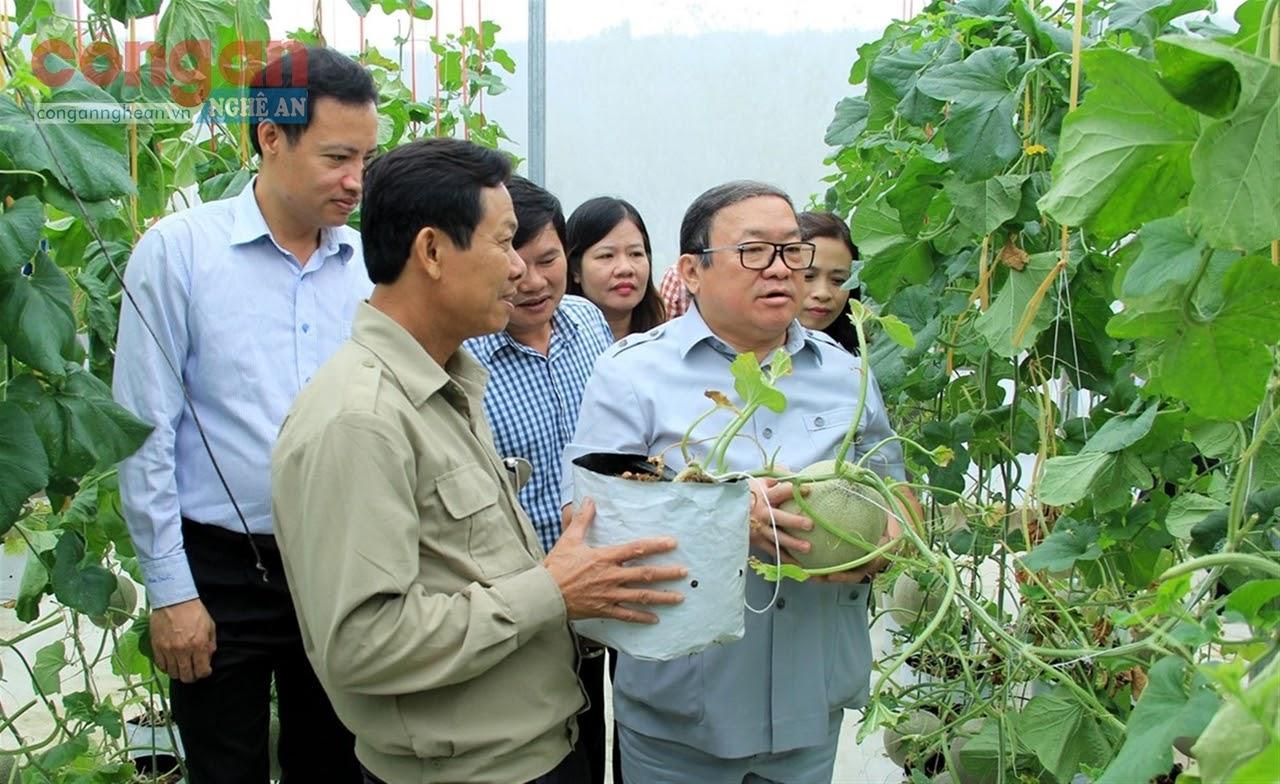 Chủ tịch Hội Nông dân Việt Nam Thào Xuân Sùng                                   tham quan mô hình sản xuất dưa lưới công nghệ cao                            tại HTX Nga Hải, xã Xuân Mỹ
