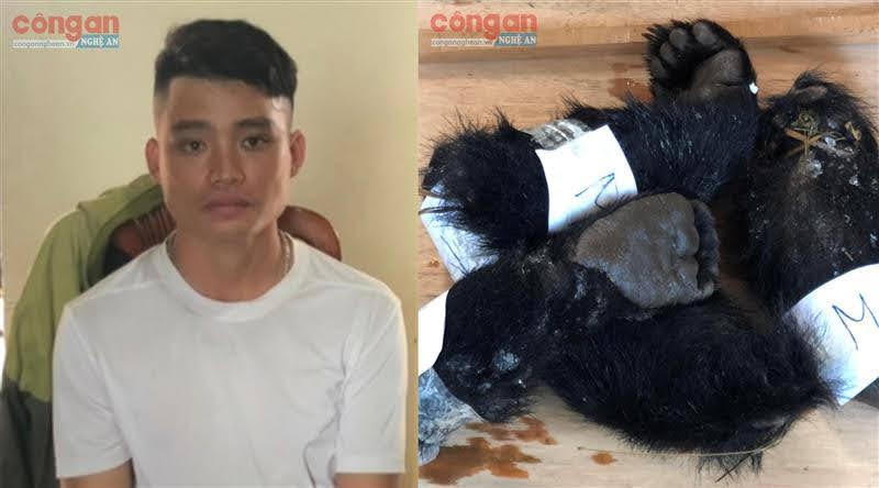 Đối tượng Kim Văn Nhân bị bắt giữ cùng tang vật 4 tay chân động vật             hoang dã nghi là gấu ngựa