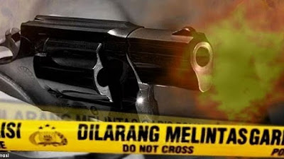 Meninggal Seketika, Kabinda Papua Ditembak KKB di Belakang Kepala