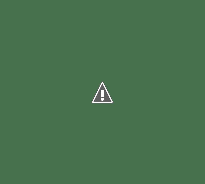 DALMACIO VELEZ