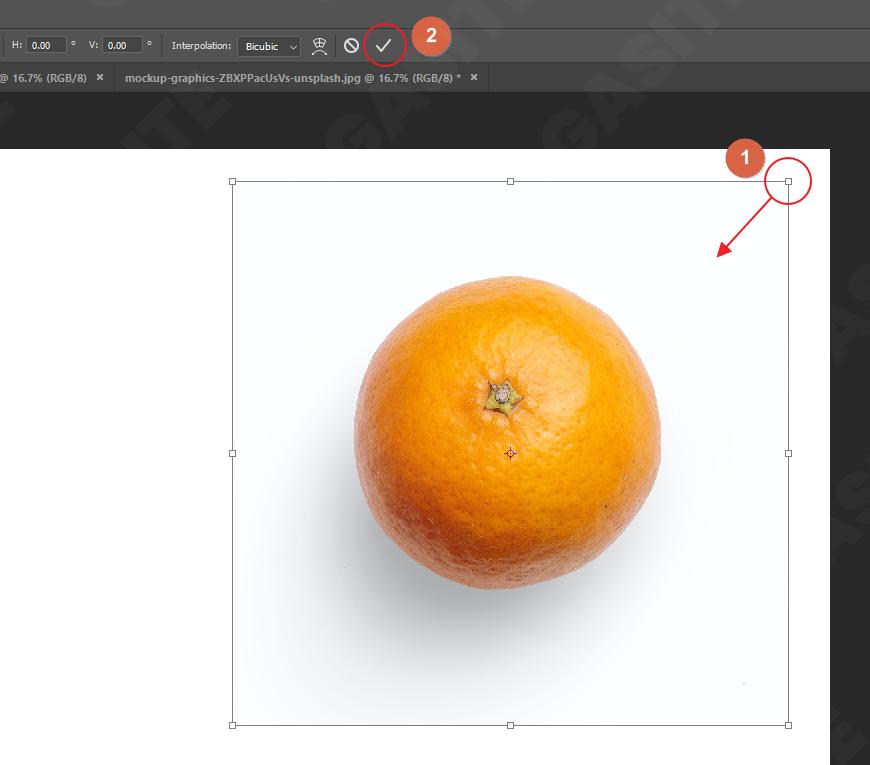 Paste Object dan Scale foto di Photoshop