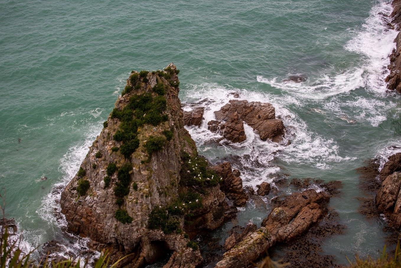 2 острова за 3 недели или гонка восьмёрочкой с привкусом короновируса