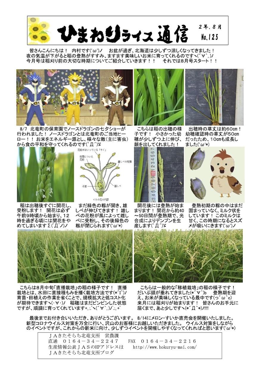 ひまわりライス通信 No.125・令和2年8月