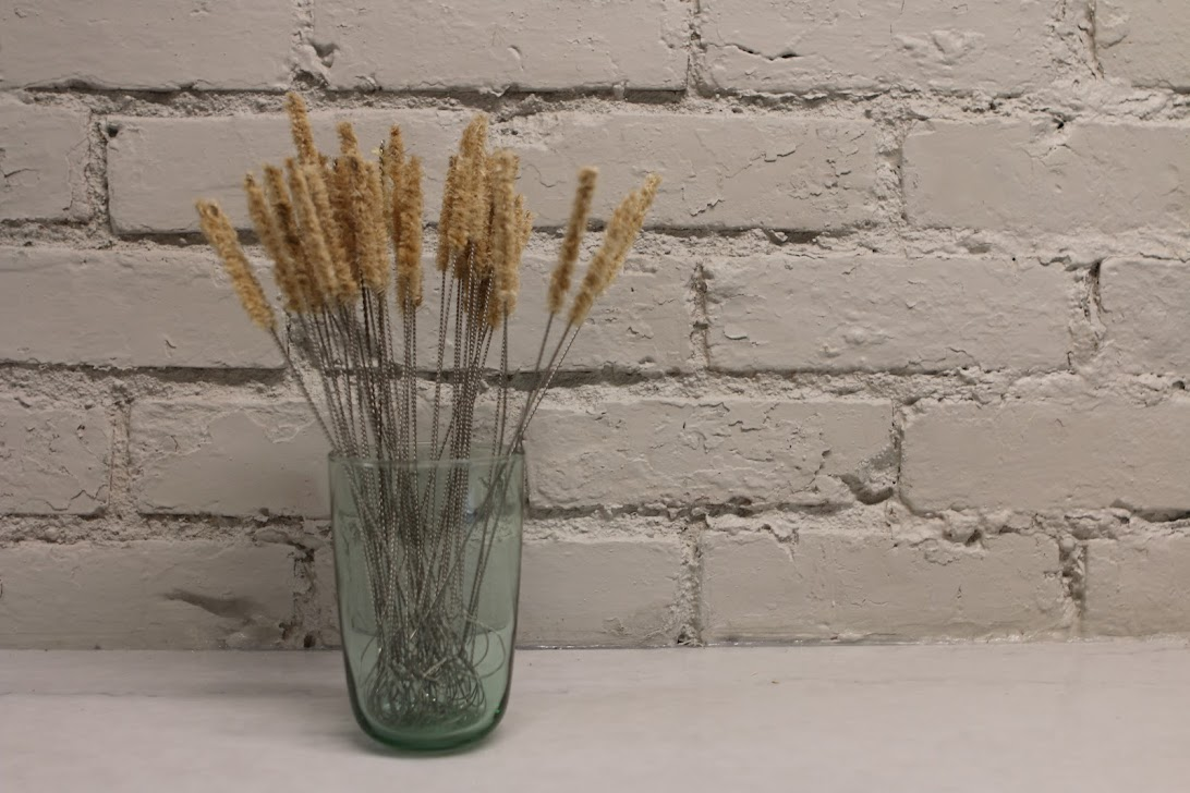 Agave Fiber Drinking Straw Cleaner