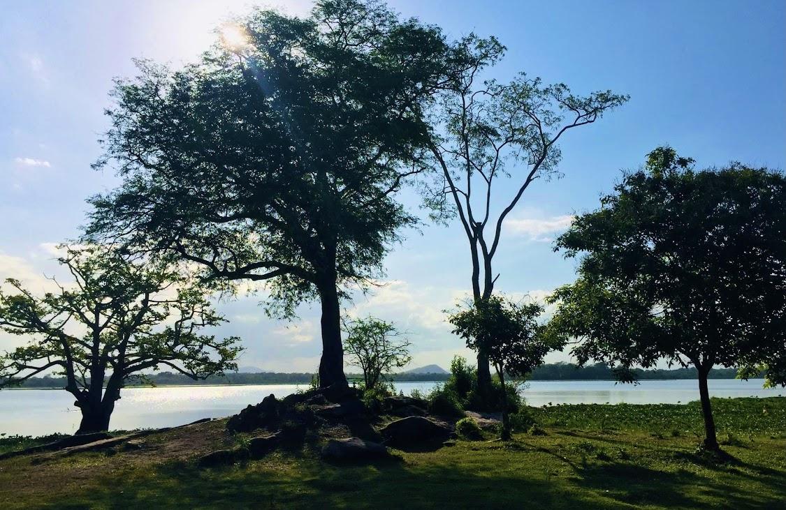 Lahugala National Park