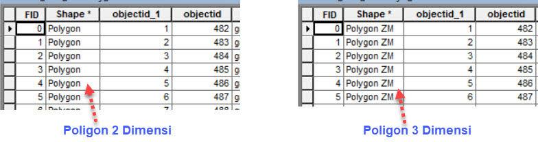 Tipe fitur tertulis dalam attribute table