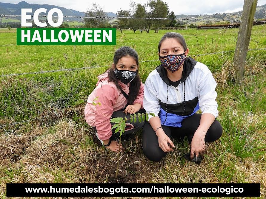 Eco Halloween