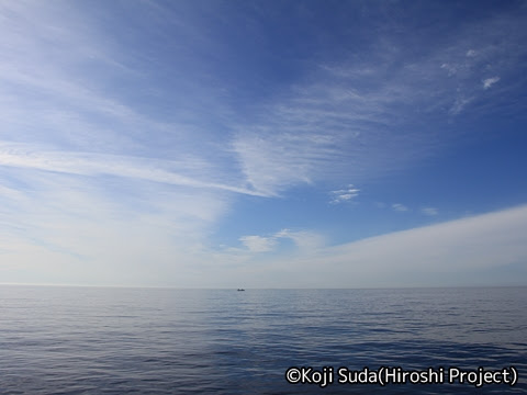 太平洋フェリー「きそ」 2日目 早朝_03