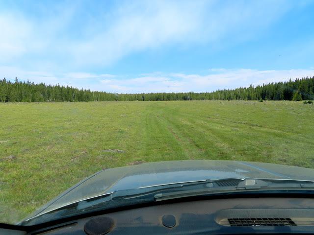 Driving across a meadow near Deer Lakes