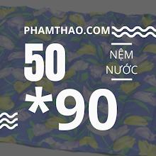 Nem nuoc Ngoc Thao 50x90cm