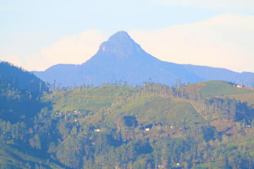 Great Western Mountain