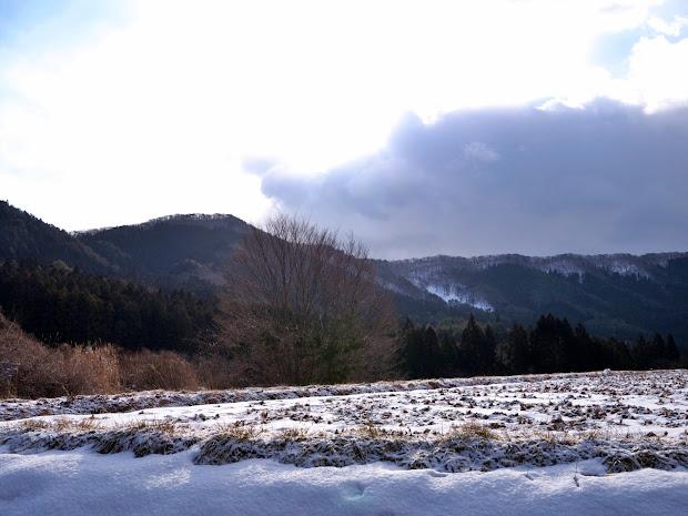 木もれ陽の道から見た惣内山