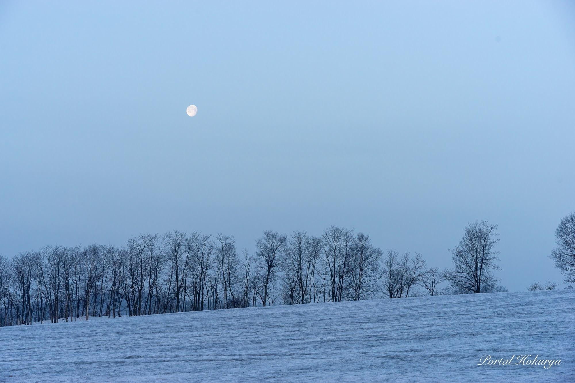 朝の白い月