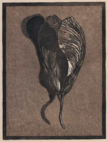 """Fallen Seeds"" chiaroscuro woodcut by Ryan Horvath (Juror), 2016"