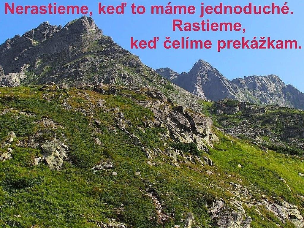 Mengusovský Volovec