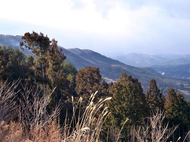 山がんの里から見た惣内山山頂