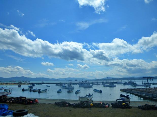 泊浜漁港(とまりはまぎょこう)