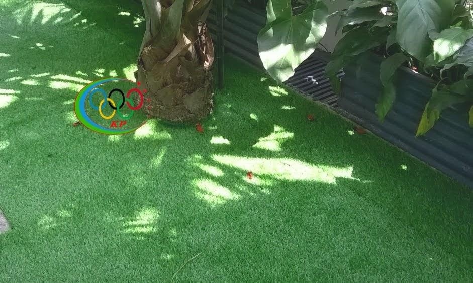 Rộng rãi của Cỏ nhân tạo sân vườn với Ứng dụng ngày nay