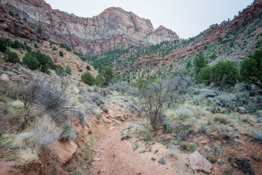Zion National Park Watchman Hike