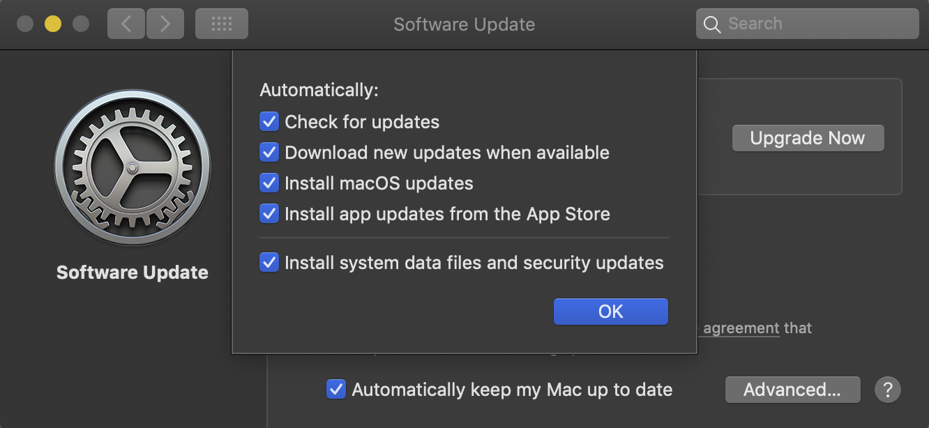 Toggle on all the check, download and install options for macOS Software Update.