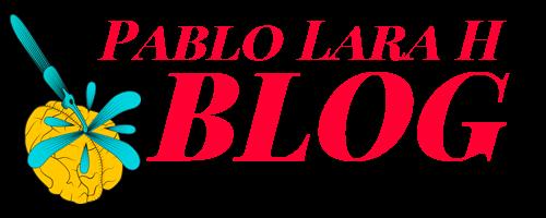Pablo Lara H