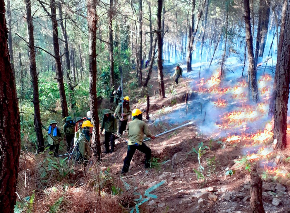 Các lực lượng xuyên đêm dập lửa để khống chế đám cháy.