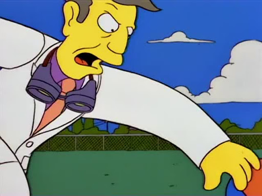 Los Simpsons 6x14 El cometa de Bart