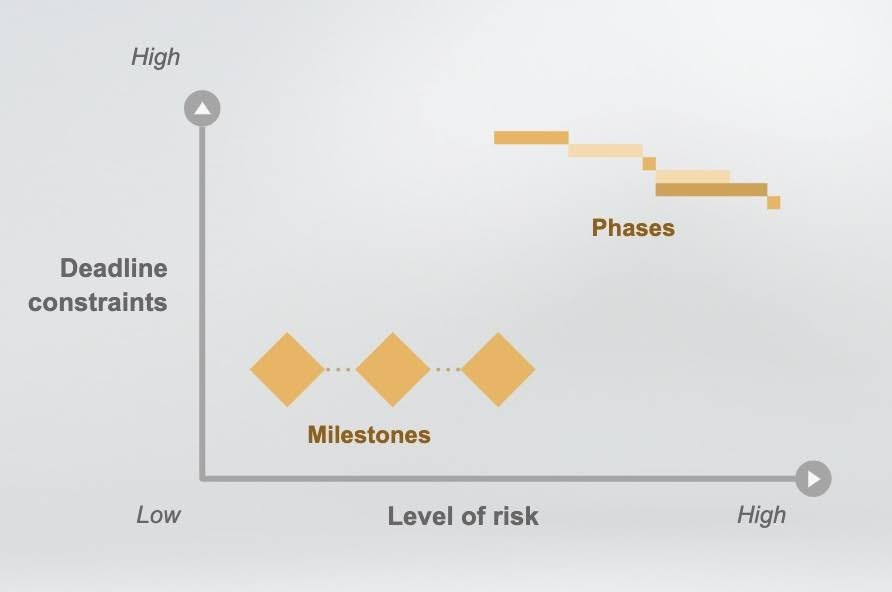 Project milestones and phases