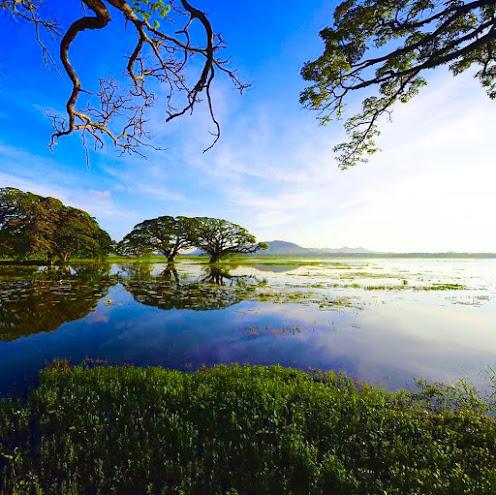 Tissa Lake