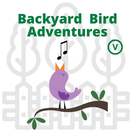 Backyard Bird Adventures for Ages 8-12